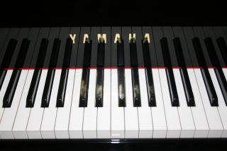 Yamaha Flügel Modell C6 Baujahr 1992